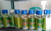 Pengembangan Minyak VCO Desa Petanahan