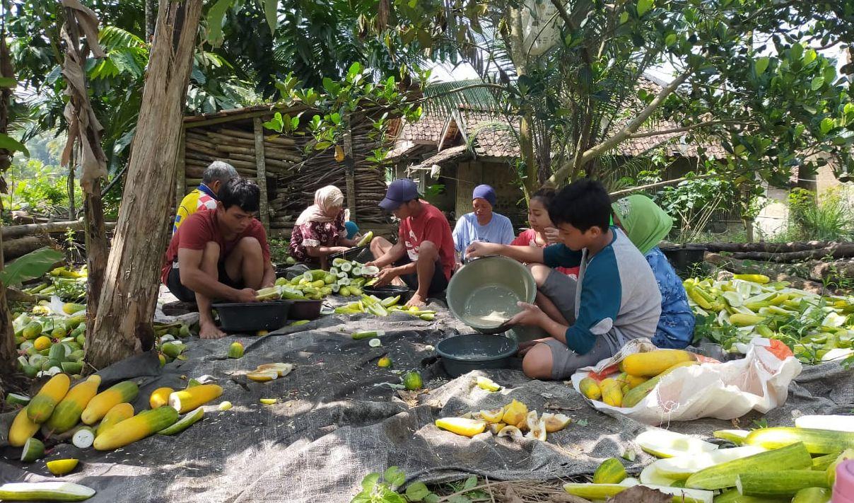 Bertani Membangun Desa, Membendung Goda Kerja di Kota