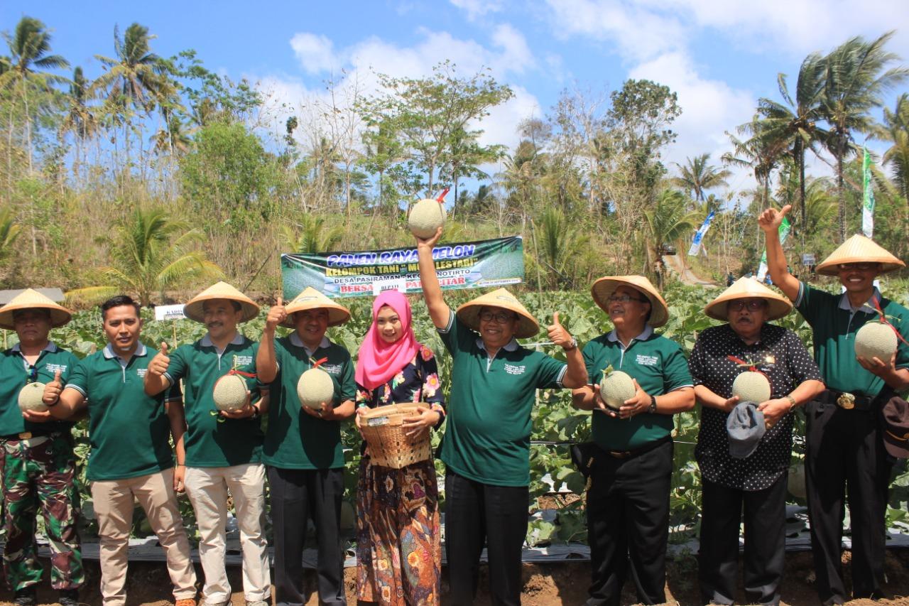 Bertani Hortikultura, Blitar Selatan Panen Raya Melon